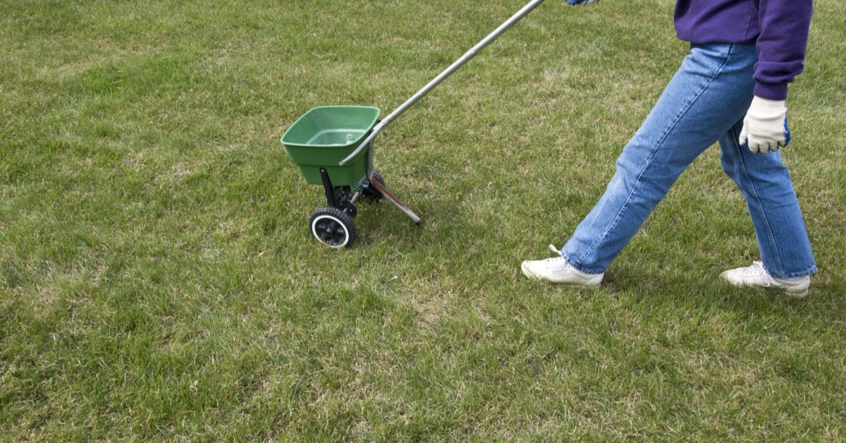 The Best Time To Fertilize Your Lawn Care Tulsa Lawnovations